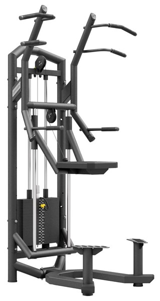 Bild von UPFORM - Assisted Chin / Dip Station